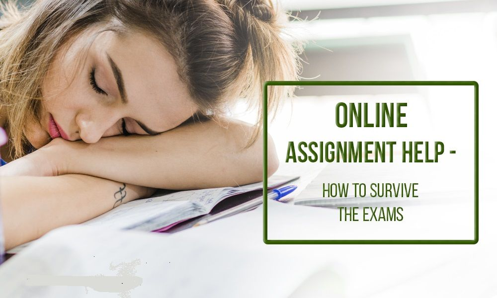 assignment writing services best